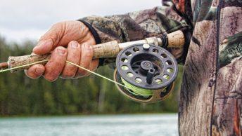 fishing fish puns jokes image